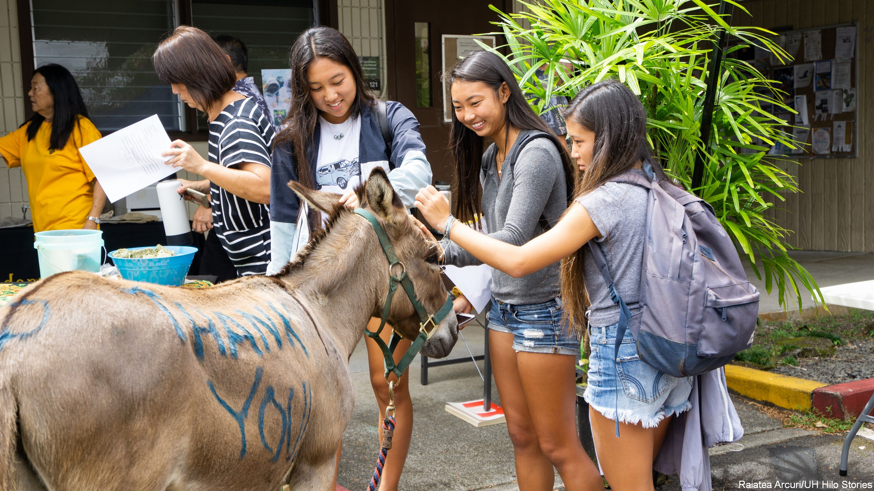 Students with donkey.