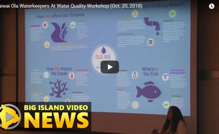 VIDEO: Presentation by environmentalist Rae Chandler-'Īao at Water Quality Workshop held at UH Hilo