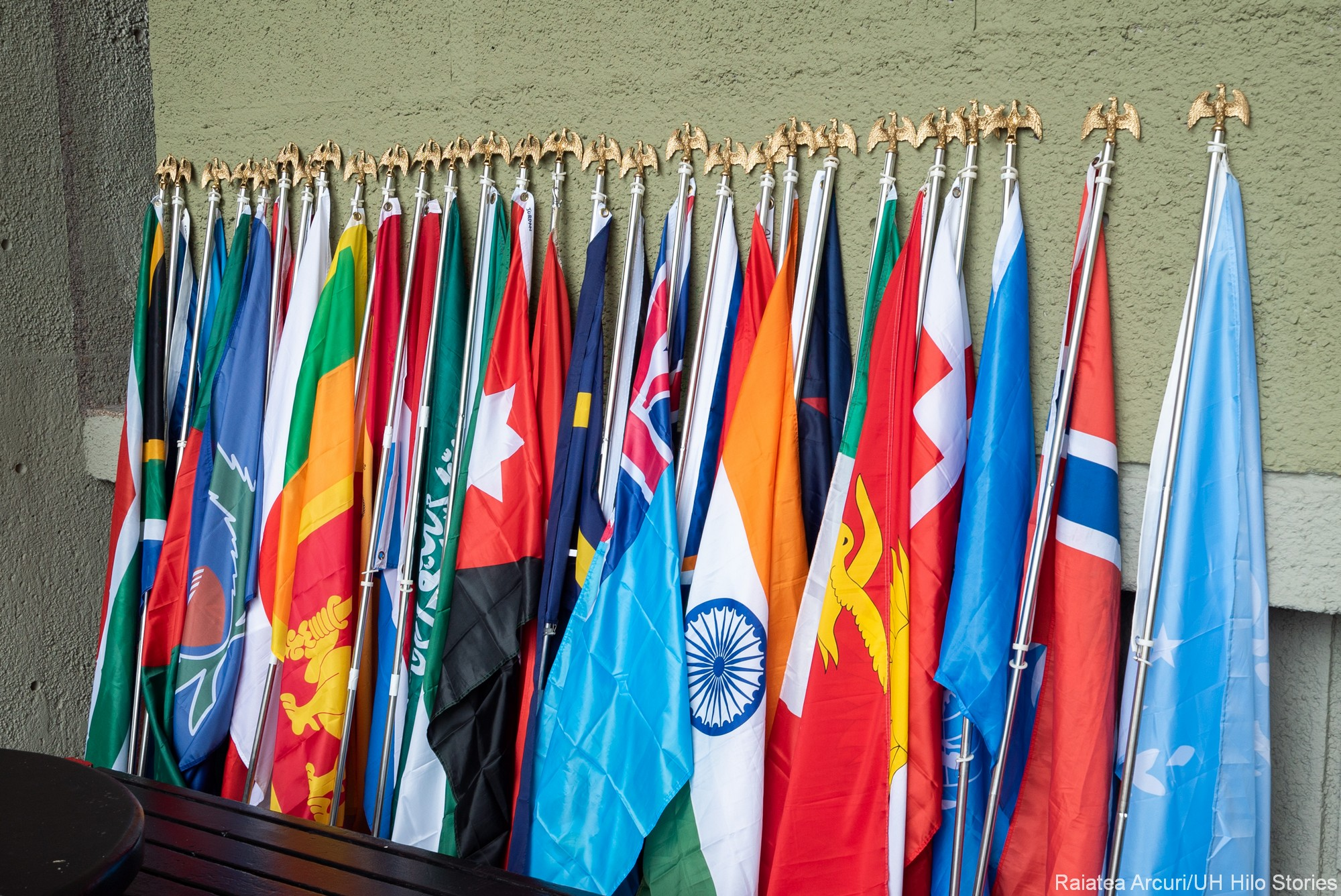 Line up of flags from all the different countries represented.