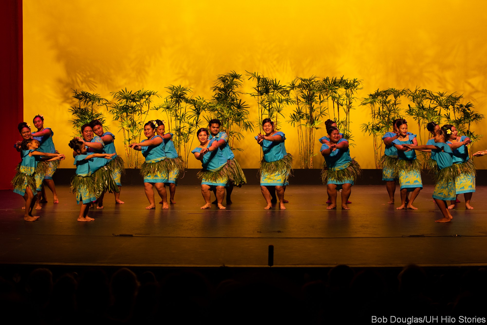 Large group of palau dancers in blue, ti skirt at waist.