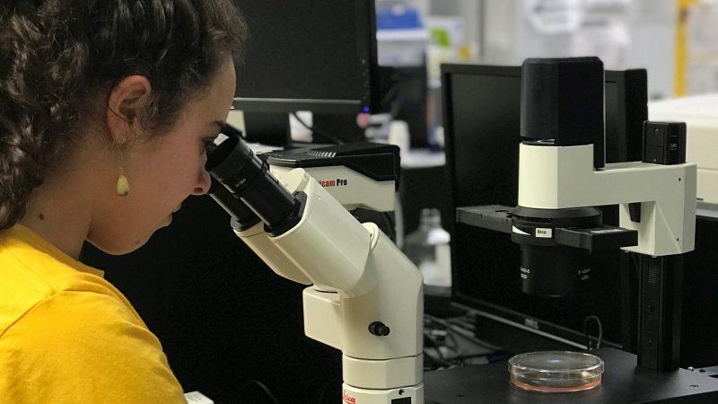 Tifaine peering into microscope.