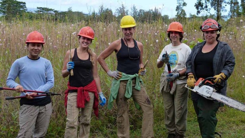 Five female researchers in field, each holding clearing tools: chain saw, clippers, saws. They each wear hard hat in orange or yellow.