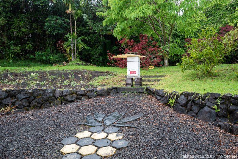 Entrance to bee garden.