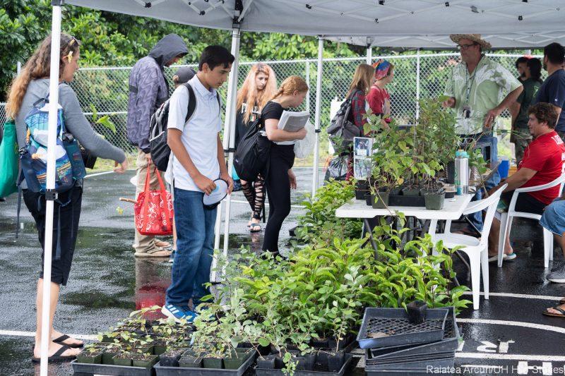 People looking at plant display.