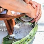 Photo fo shredding coconut with the words: RESEARCH BRIEF: Bias Against Micronesians in Hawaii. February 2019, Rebecca Stotzer, PhD. University of Hawaii at Manoa, Myron B. Thompson School of Social Work.