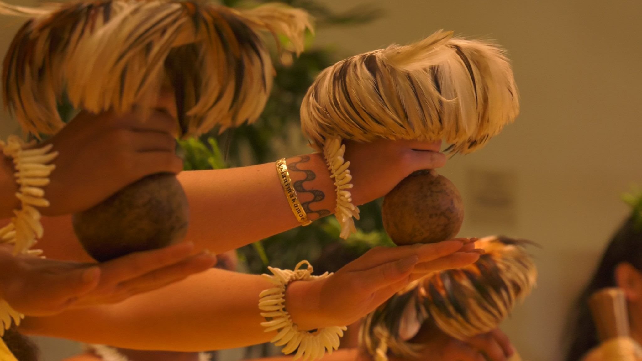 Hands holding ʻUlīʻulī, feathered gourd rattles.