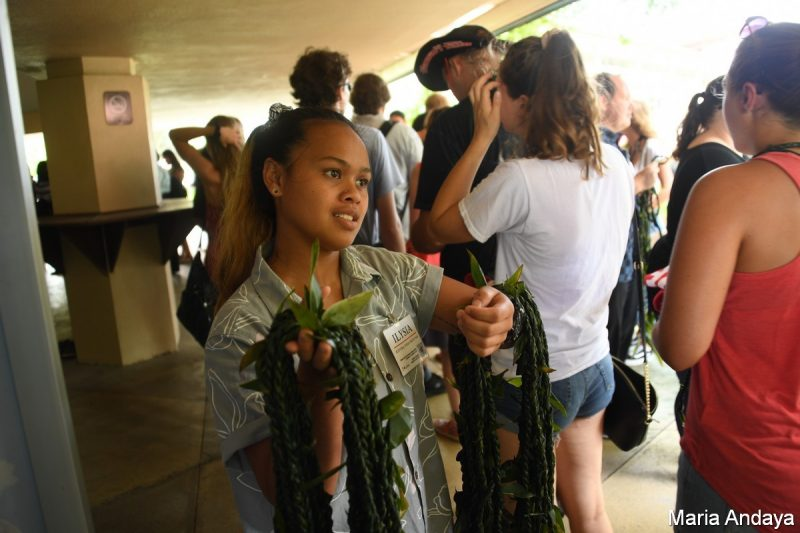 Young woman stands holding multiple ti leaf lei draped on her arms, ready for others to give to students.