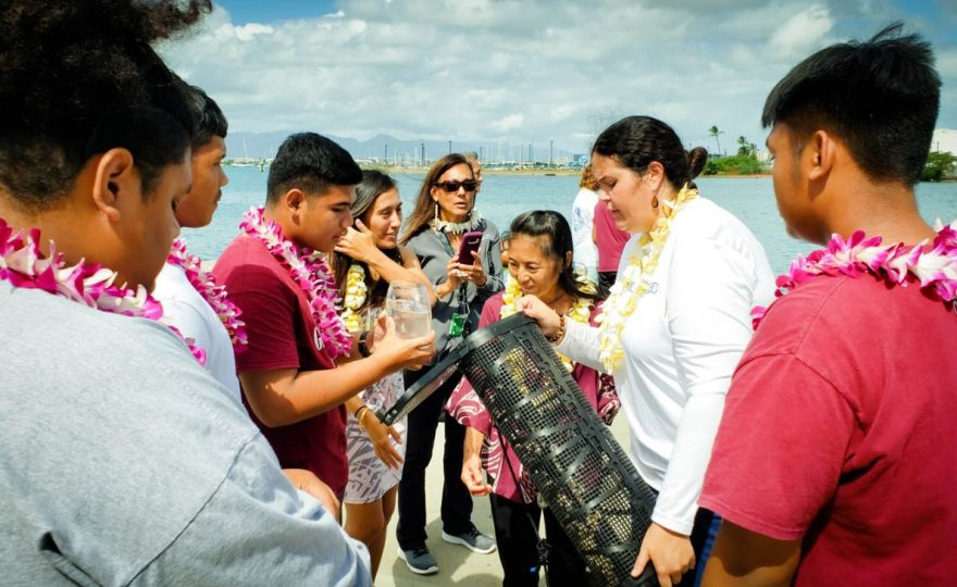 UH Hilo aquaculture center partners with Honolulu CC to improve water quality at Sand Island