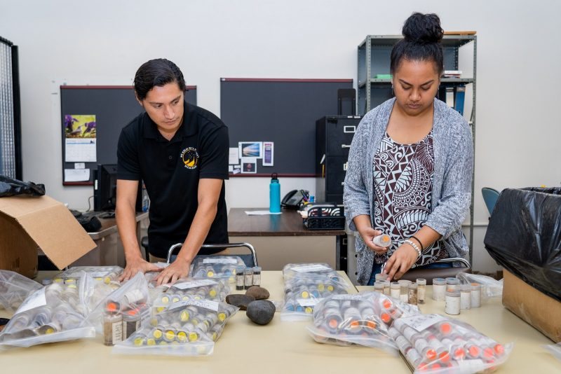 Students James Papa and Shania Tamagyongfal sort through artifact collection.