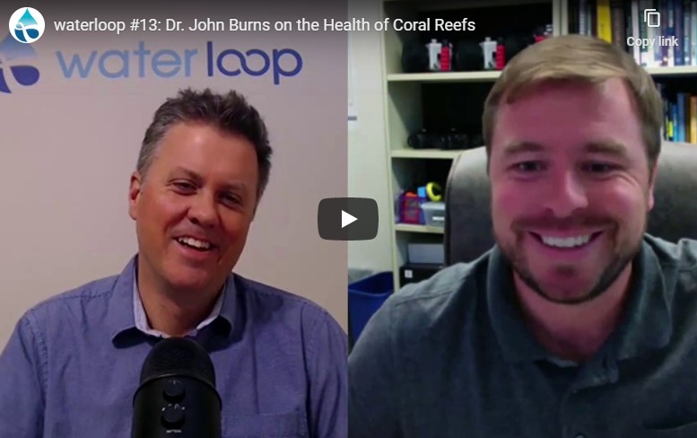WATCH: Interview with UH Hilo marine scientist John Burns about the health of coral reefs