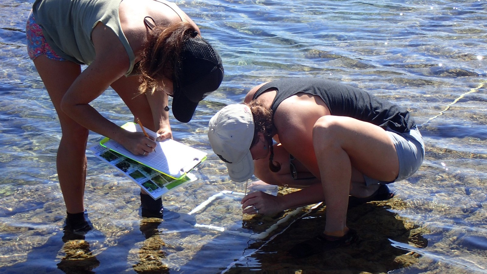Two women in tidal pool collect data with measuring device and clip board.