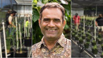 Sharrod Maratta inset against greenhouse photo.