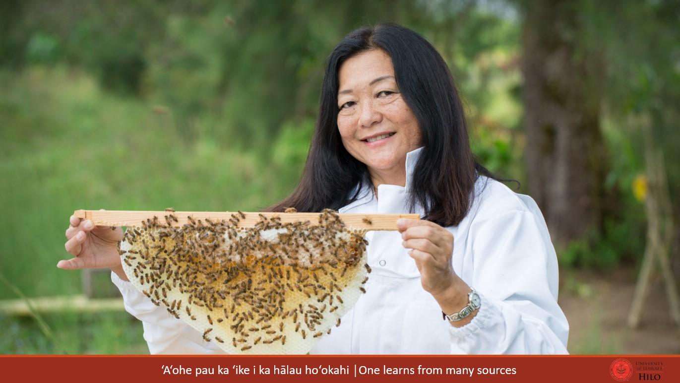 Lorna Tsutsumi holds portion of beehive with bees and honey. At bottom of slide: ʻAʻohe pau ka ʻike i ka hālau hoʻokahi/One learns from many sources.