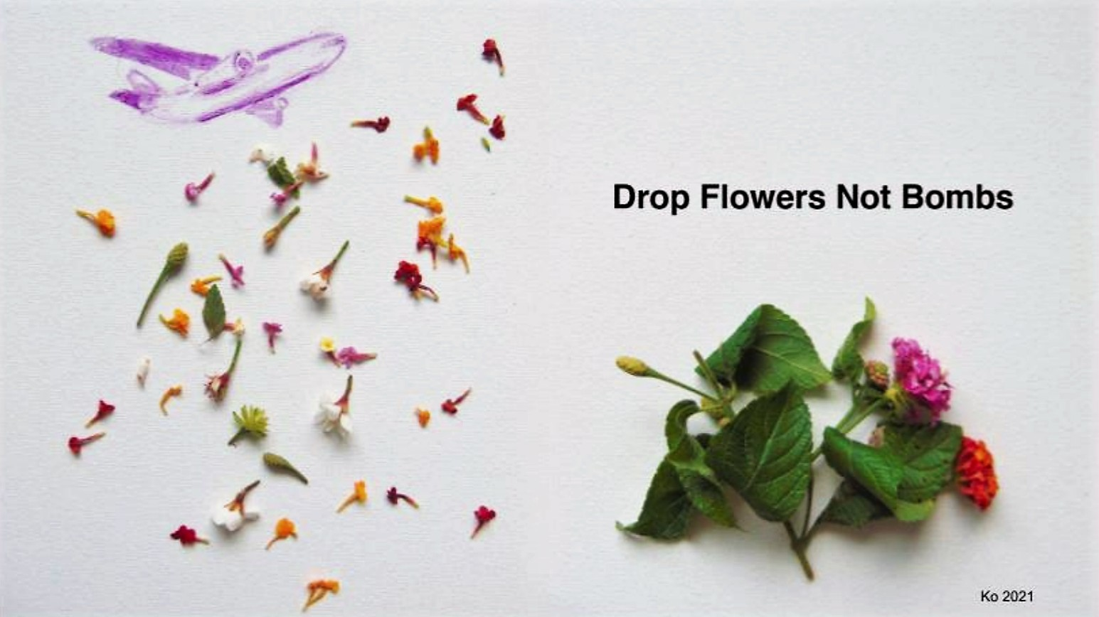 Airplane dropping flowers