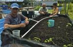 UH Hilo announces 29 courses now designated as focused on sustainability topics