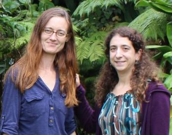 Climate change research at UH Hilo: Collecting data on forests and trees