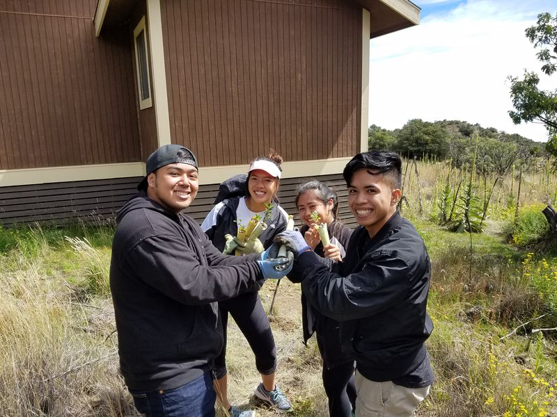 A group of hikers showing saplings they intend to plant