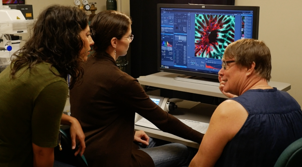 TechKnow correspondent Marita Davison looking at coral specimen underneath the confocal microscope with Amy Eggers and Dr. Ruth Gates