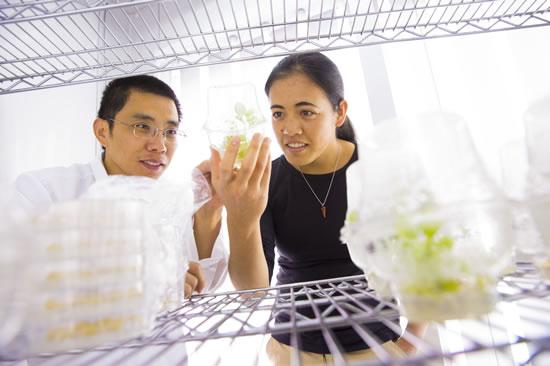 Burch in lab