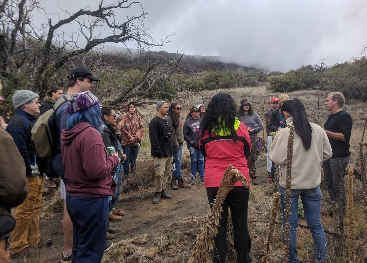 Sixteen students stand in circle on foggy mountain listening to professor