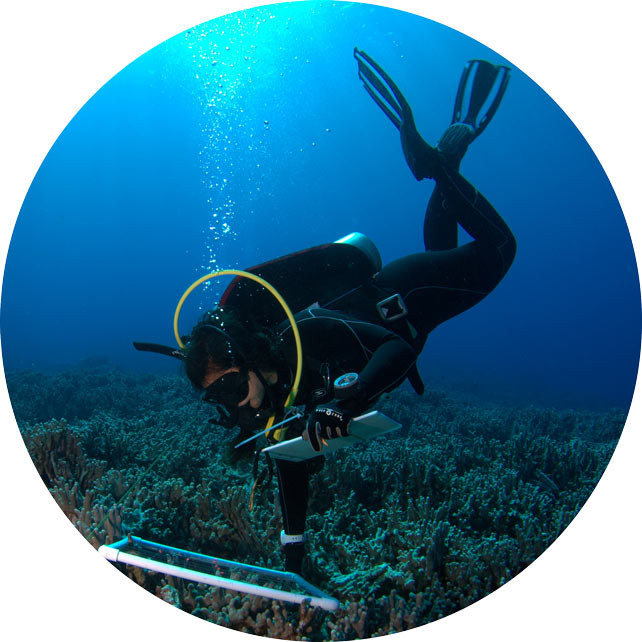 marine science scuba diver