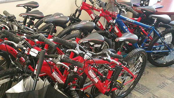 10 new mountain bikes available for rental