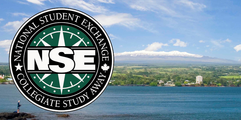 2019 NSE logo layered on horizon shot of Hilo Bay