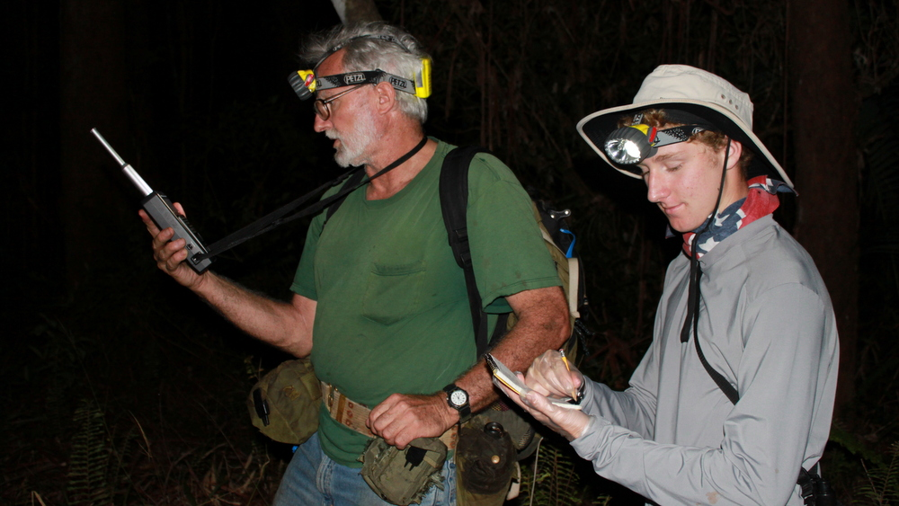 Bill Mautz and student in the forest at night.