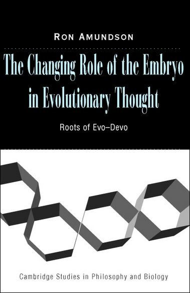 an analysis of the roots and evolution of the stoa The ironic twist of these management principles is that even though they have their roots in the united states, today american companies struggle to use them to the successful level that some of their japanese competitors do.