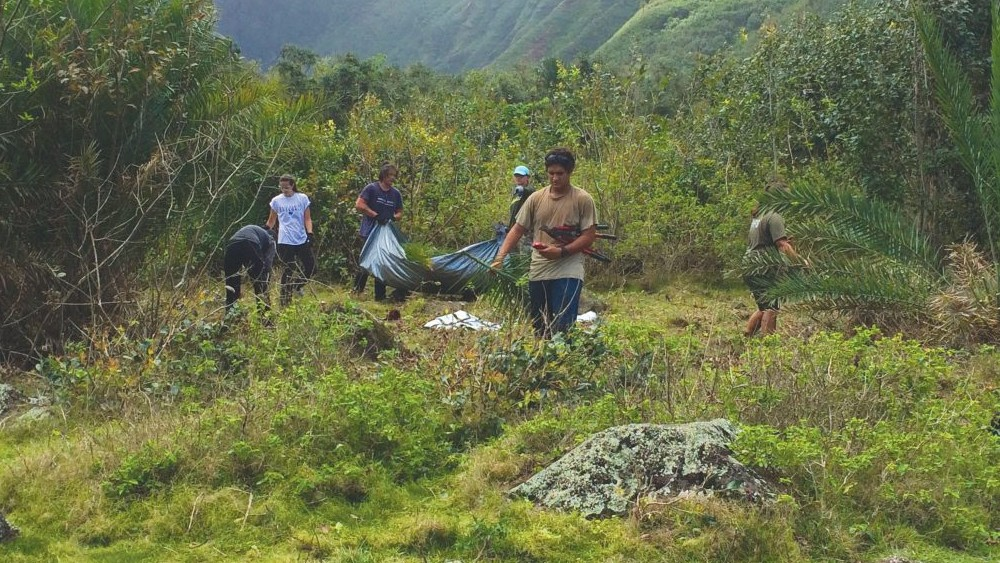 UH Hilo History students working in the field on Molokai