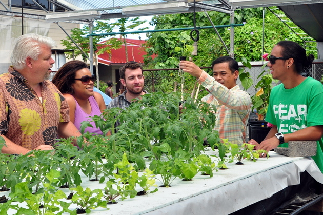 Prof. Arancon shows students root development of plants in hydroponic experiments. Left ot right, Timothy Housman, Noel Dickinson, Prof. Arancon, and Keoni Bailoda.