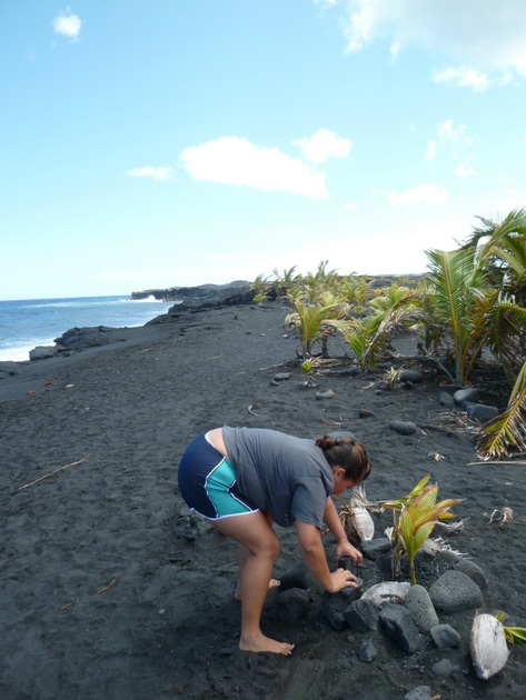 Student leaning over planting a coconut on the beach.