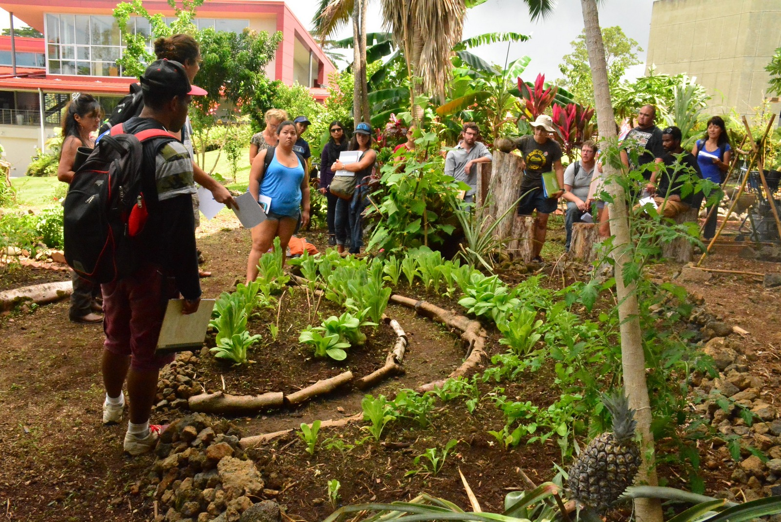 Group of students stand in vegetable garden on the UH Hilo campus.