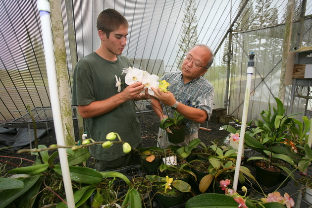 Bill Sakai with student looking at orchid in greenhouse.