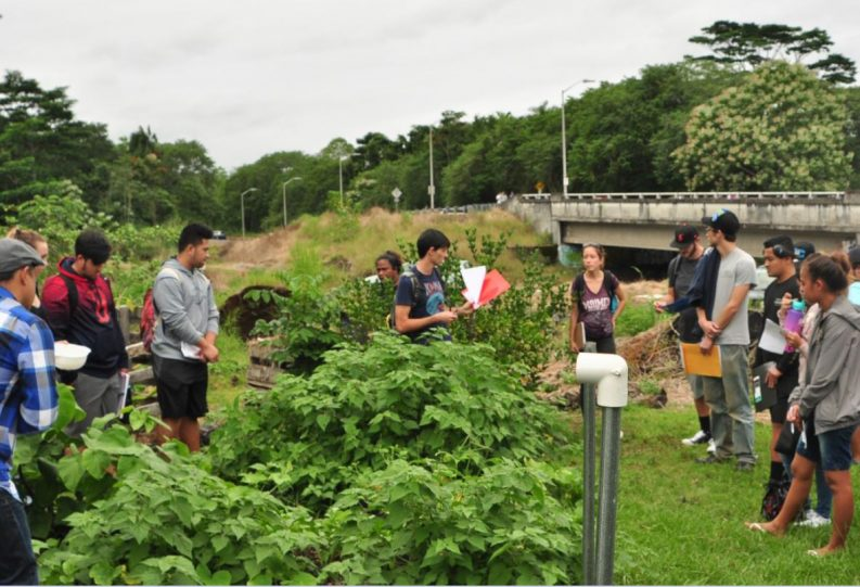 Students touring gardens.