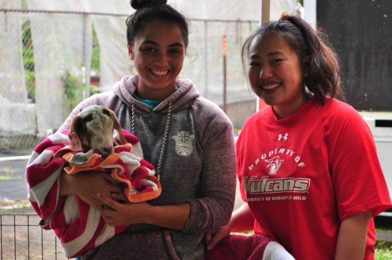 Two students, one holding a baby goat.