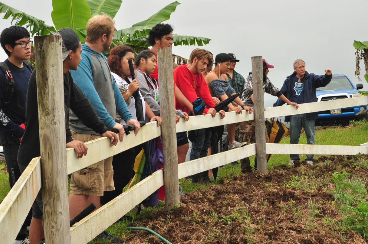 Group of students at a fence looking into enclosure.