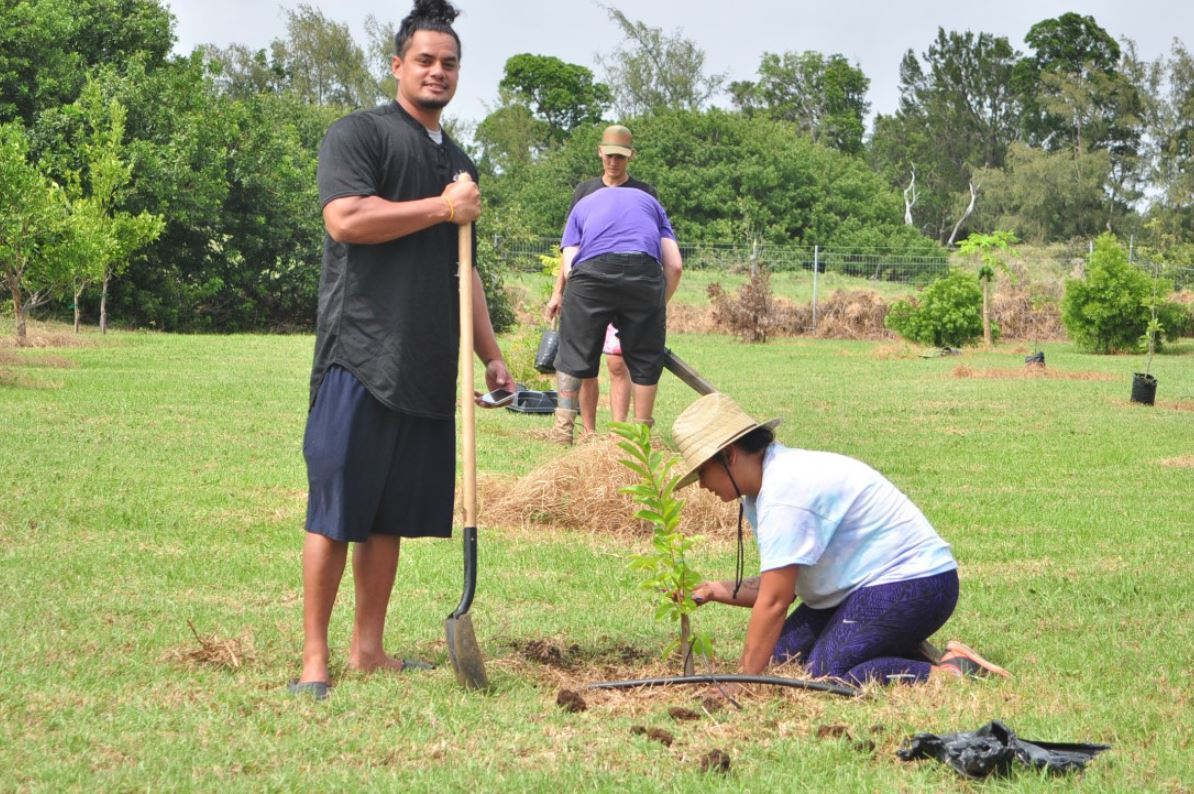 Student in field holding hoe, another planting tree..