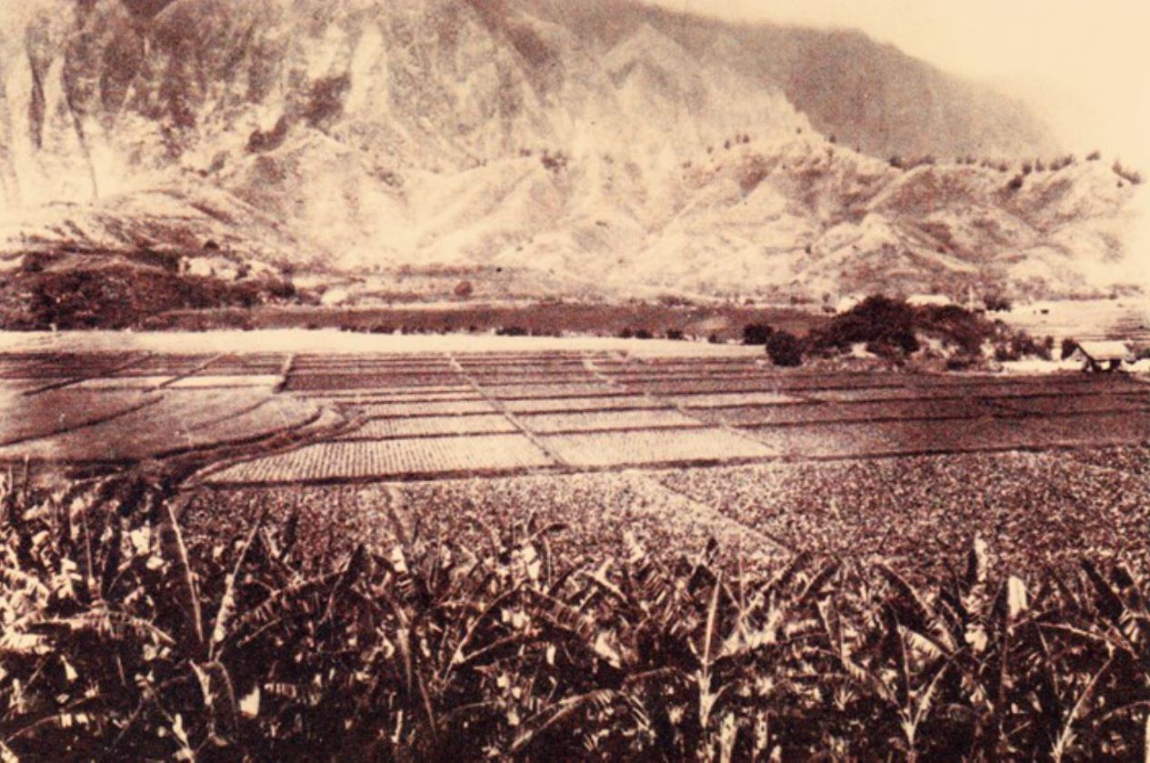 Sepia colored old print of valley with farmland.