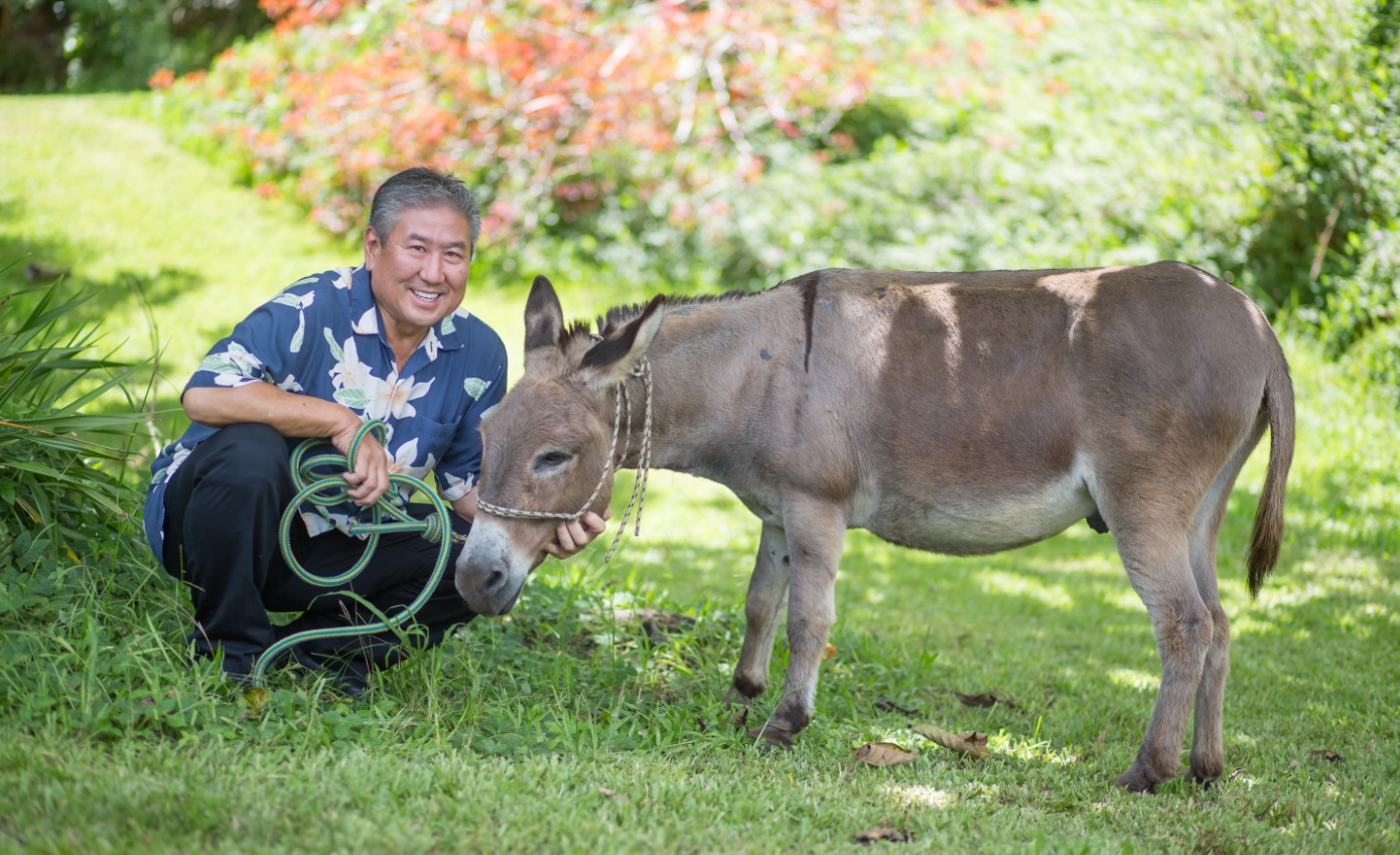 Alan Wong and Bob-Bob the donkey