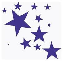 STARS CLUSTER