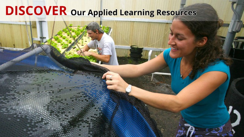 Aquaculture students grow fish at to the Pacific Aquaculture Resource Center.