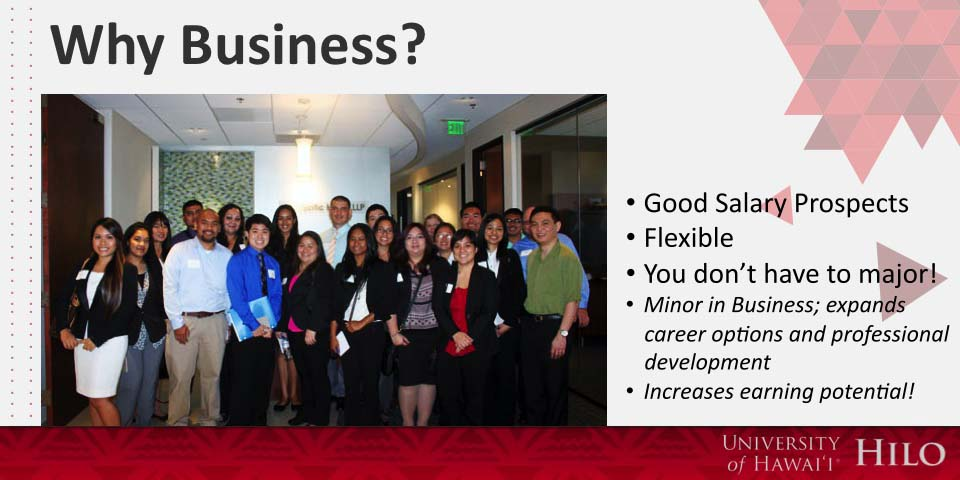 Why Business? - Good Salary Prospects, Flexible, You don't have to major:  A minor in business expands career options and professional development, and increases earning potential.