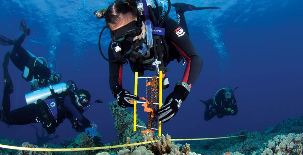 Marine Science students immersed in studying Hawaiʻi's unique coral reefs.