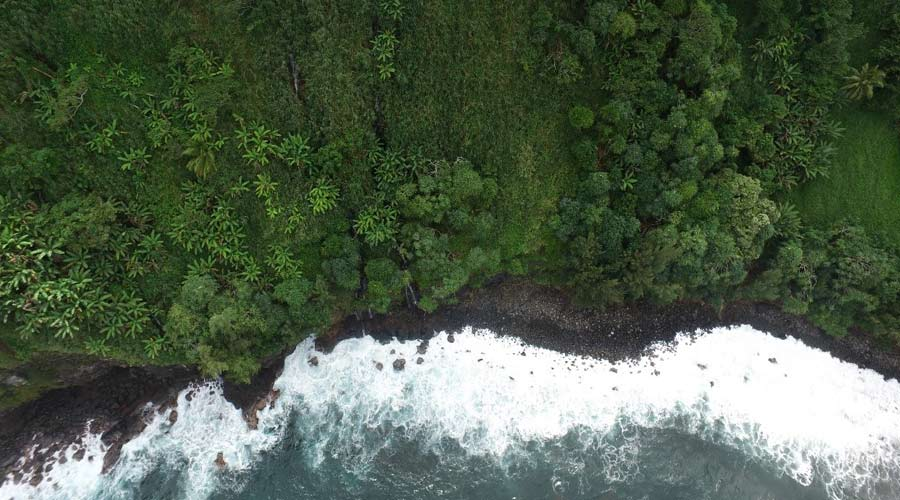 A drone's eye view of coastal shifts. Photo credit: Rose Hart, UH Hilo.